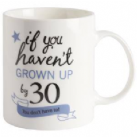 Transomnia - If you haven't grown up - 30 mug